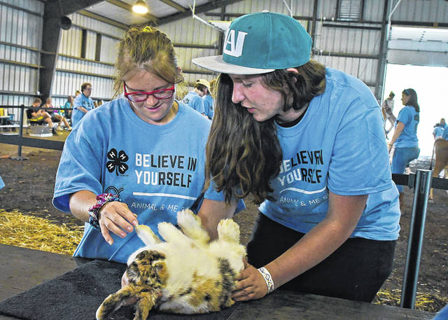 A rabbit named Mazikeen lays on her back very calmly as Macy Arthur, left, a special needs individual, learns the parts of a rabbit from Makenzie Levings, a 4-H member.
