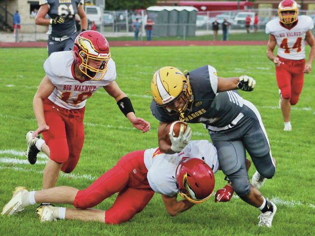 Golden win for Eagles - Delaware Gazette
