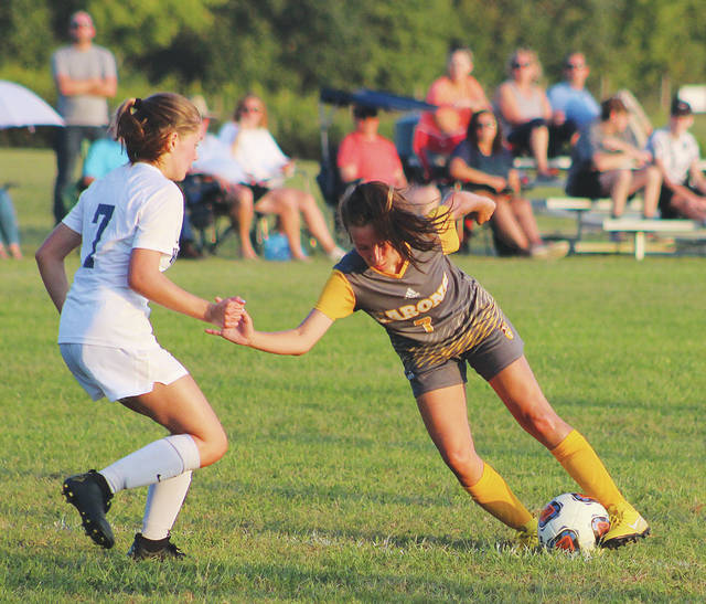 Buckeye Valley's Evy Wirth puts a move on Wellington's Caroline Cooke during the second half of Wednesday's league showdown in Delaware.