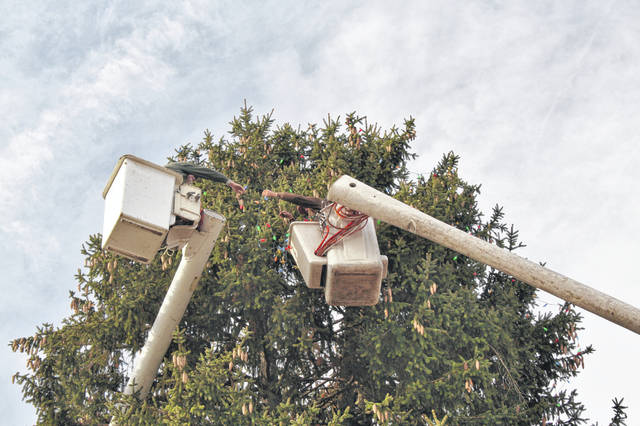 The Village of Galena's tree in the square was strung Tuesday with Christmas lights by Mauro Squadrani and Christopher Leving of Adam's Tree Care.