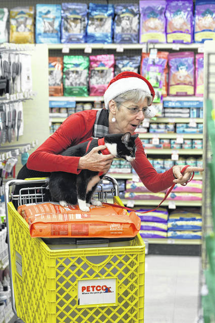 Powell resident Deborah Miller shops inside Petco on North High Street in Columbus with her cat, Pierre. Miller adopted Pierre from Cozy Cat Cottage in Powell.