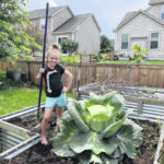 Local girl wins cabbage contest