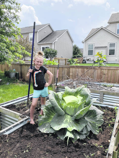 Arrowhead Elementary student Lola Robenstine shows off her award-winning cabbage plant, which netted her a $1,000 savings bond.