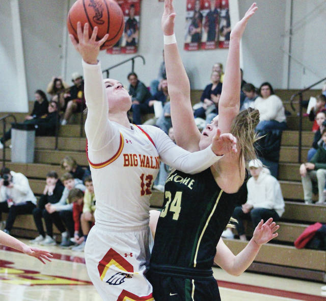 Big Walnut's Avery Schone, left, is defended by Dublin Jerome's Alie Intihar during the first half of Friday's Division I sectional final in Sunbury.