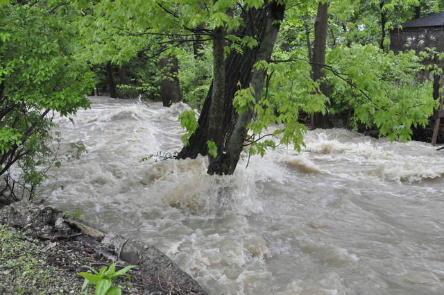 The Delaware Run resembled a raging river Tuesday morning. Pictured is the tributary as it flows east just past South Washington Street in Delaware.