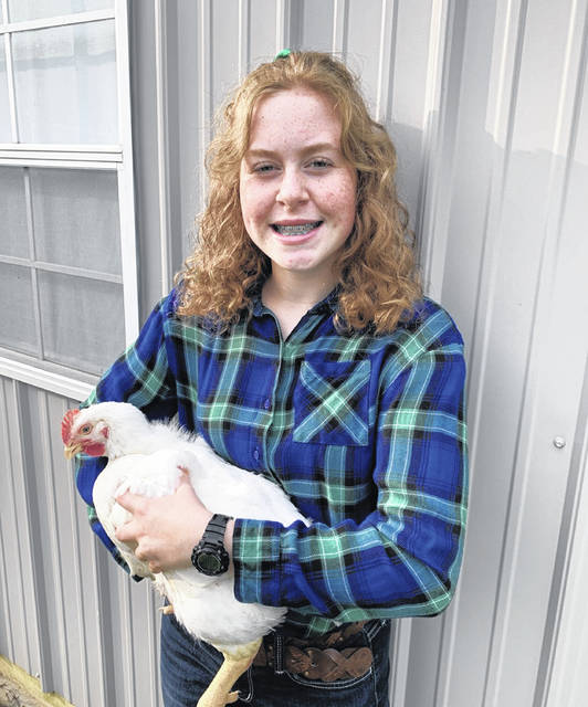 Buckeye Valley seventh grader Abby Pyle holds one of her champion pen of three market chickens during the 2020 Delaware County Junior Fair.