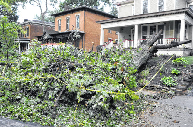 Trees throughout the city of Delaware, like this one at 273 N. Franklin St., were uprooted during Monday's storms. City officials said that City of Delaware Fire, Police, Public Utilities and Parks staff were all dispatched Monday to help clean up during and after the storm.