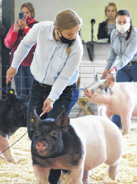 Lilly Henney, a junior at Centerburg High School, shows her overall grand champion hog in the Market Hog Show held Sept. 19 during the 2020 Delaware County Junior Fair.