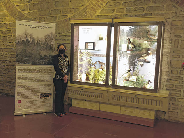 Lisa Tabak, curatorial director of the OWU Natural History Museum, stands with the display she helped to plan and install at the Ohio Statehouse.
