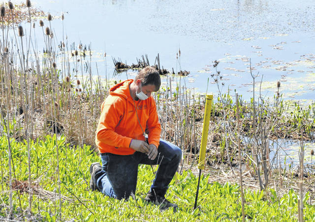 Andy Adkins, an employee with the City of Delaware Public Utilities Department, plants a tree sapling Monday at the wetlands at Mill Run Park, located at 840 Mill Run Crossing.