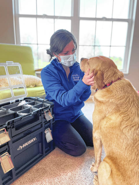 Renner said when she visits animals for the first time for care, she will play with them and gain their trust, which is much easier because the animals think of them as friends visiting their home.
