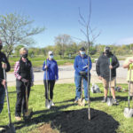 Trees planted at Alum Creek park