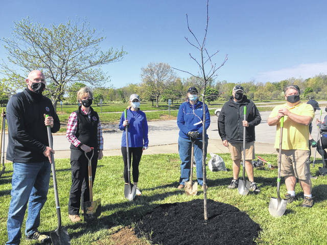 Approximately, 20 large native trees were planted at Alum Creek State Park on Friday, April 30, in honor of Arbor Day. More than 30 volunteers from Columbia Gas/NiSource spent the morning planting a variety of hardwoods and white pines throughout the beach area.