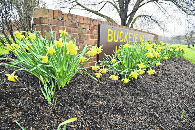 Flowers have bloomed around the Buckeye Valley High School sign on Coover Road in Delaware.