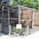 Preservation Parks opens new aviary