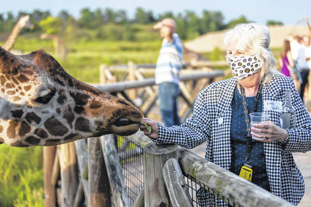 ZOOlentangy attendees had the opportunity to feed giraffes.