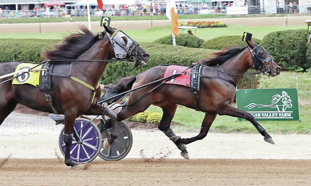Herculisa and Brett Miller hang on to defeat Celebrate With Me (Chris Page) to capture the Ohio Breeders Championship and sweep the Ohio Triple Crown Monday at the Delaware County Fair.