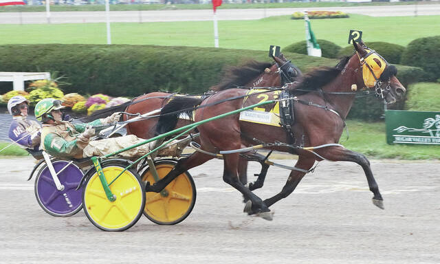 Scarlett Hanover and driver Tim Tetrick head toward the finish line on the way to a win in the final of the $253,800 Jugette for three-year-old filly pacers on Wednesday at the Delaware County Fairgrounds.