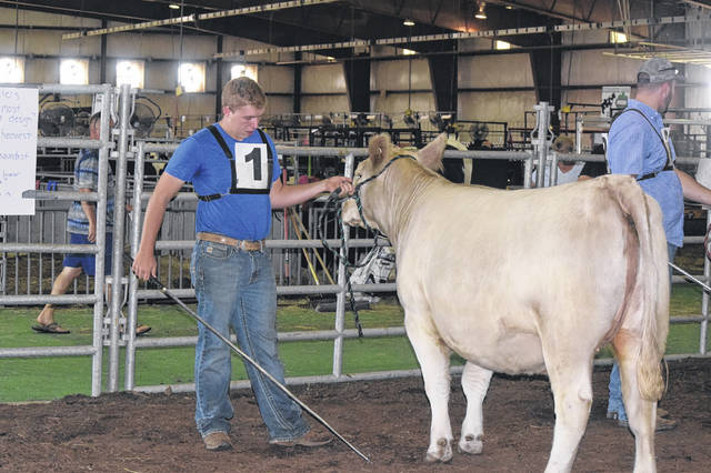 This year, during the Famous Preble County Fairy, 123 junior fair exhibitors got the chance to try their hands at judging — instead of showing — livestock. The first ever General Livestock Judging Contest was held on Thursday, Aug. 2.