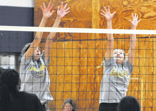 There are high expectations for the county's volleyball teams this fall as the season gets underway in full force this week.