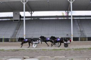 Harness racing held without spectators