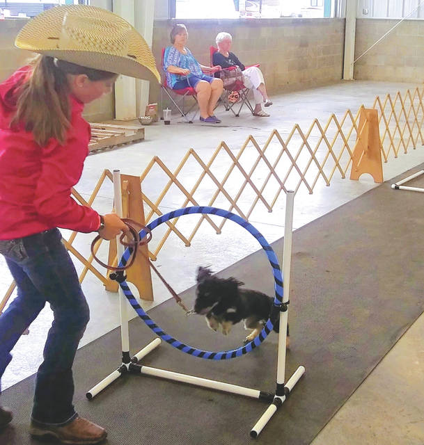 Fundraising efforts and donations will allow the Preble County Tailwaggers to purchase $5,000 worth of equipment for next year's Preble County Fair.