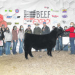 Local youth compete in Ohio Beef Expo Jr. Show