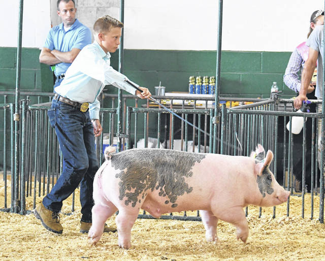 Hog shows were one of many events held during the Jr. Fair portion of the Preble County Fair, which was held from Saturday, July 31 through Saturday, Aug. 7