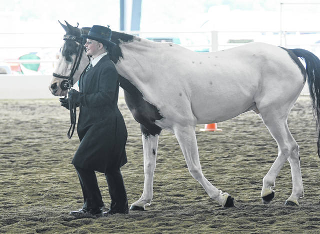 An open class Horse and Pony Show was held Sunday, Aug. 1 during the Preble County Fair. The fair continues until Saturday, Aug. 7.