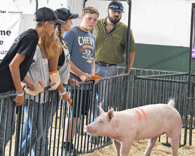 The Jr. Fair livestock judging contest was held Thursday, Aug. 5 during the 171st Preble County Fair.