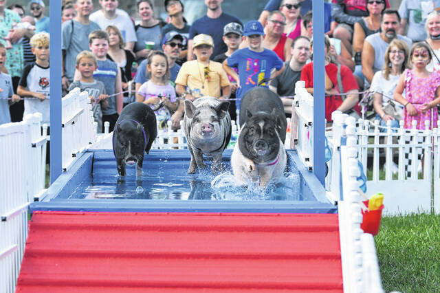 The Preble County Pork Festival returned to the Preble County Fairgrounds this year, bringing back favorites such as pig racing.