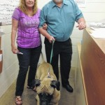 Gallia shelter dog returned to Cleveland owner