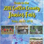 2018 Gallia County Fair