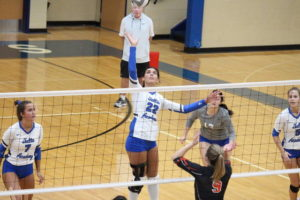 Blue Angels wallop Waverly for sectional crown
