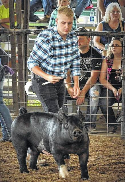 Derek Henry, a Gallia Academy FFA member, shows a pig at the showing at the Gallia Junior Fair.