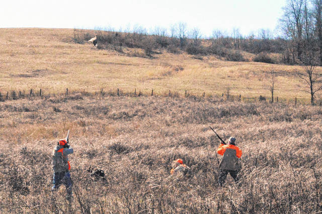 Hunters bring down pheasants during the fifth annual Heroes Tribute Hunt at the McKeans Pheasant Farm.