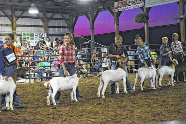 Junior Fair participants take part in the 2019 Meigs County Junior Fair Goat Show. The Meigs County Fair Board is currently planning a full fair for 2020, which is scheduled to take place Aug. 17-22.
