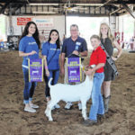 Mason livestock show, sale canceled… Looking at options for exhibitors