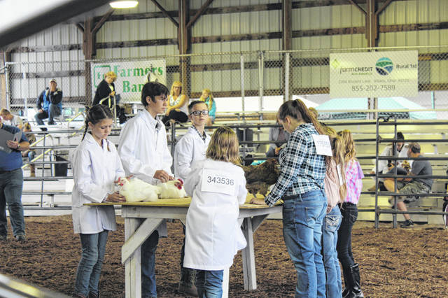 The 2020 Meigs County Fair will be limited to Junior Fair activities, including livestock shows and the annual livestock sale. (OVP File Photo)
