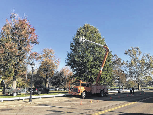 Pictured from November of last year, are some of the many volunteers who work to place the light balls high atop the trees for Gallipolis In Lights. (OVP File Photo)