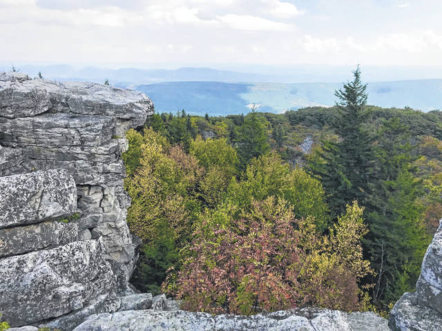 This image of Dolly Sods Wilderness in the Monongahela National Forest in West Virginia shows a few trees turning yellow from past fall seasons.