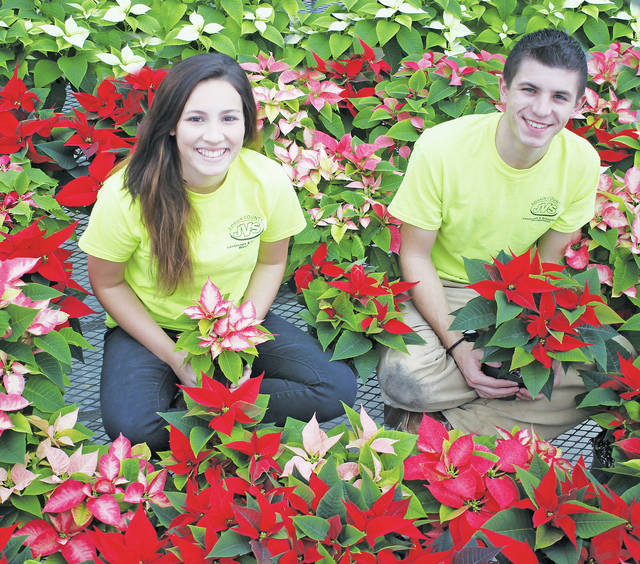 Lorain County JVS landscape and greenhouse management students Sydney Collier and Don Sabella pose among poinsettias.
