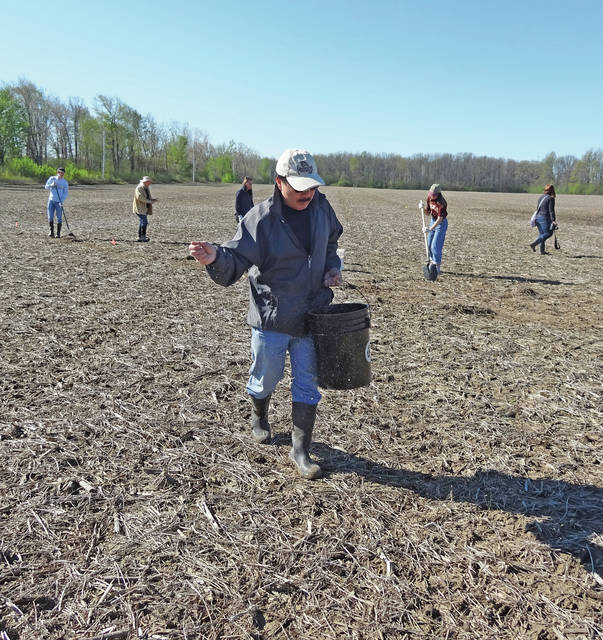 Volunteers planted seeds this spring at the Oberlin Great South Woods property on Hamilton Street near the city recreation complex and plan to return Sept. 23.