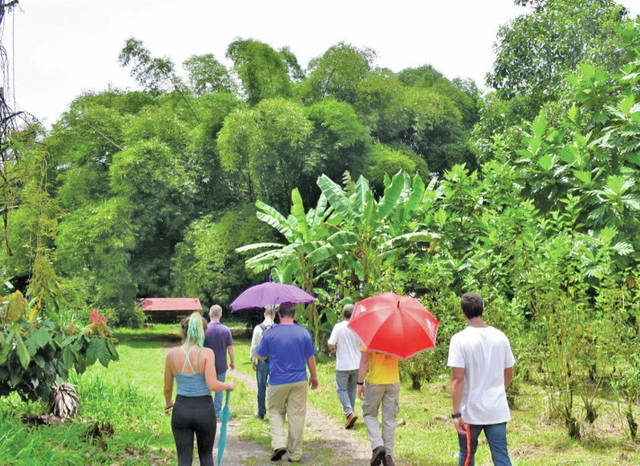 Eli Arbogast and his fellow interns explore many of the farms in Costa Rica.