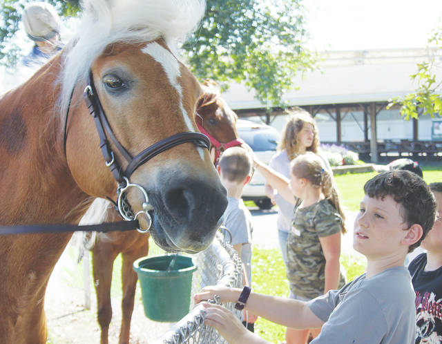 McCormick Middle School fourth-grader Camden Baker says hello to a horse named Audi Oct. 9 during a Food for America event at the Lorain County Fairgrounds.