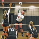 District 7 makes all-district volleyball selections