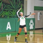 Delta volleyball team downs Pettisville in four