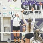 Bulldog volleyball downs Panthers for sectional crown