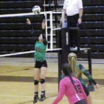 Blackbirds outlast Panthers in five sets