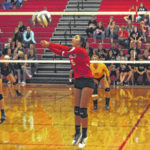 County spikers receive player of the year honors in District 7